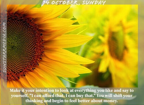 14 October • Sunday • Make it your intention to look at everything you like and say to yourself,