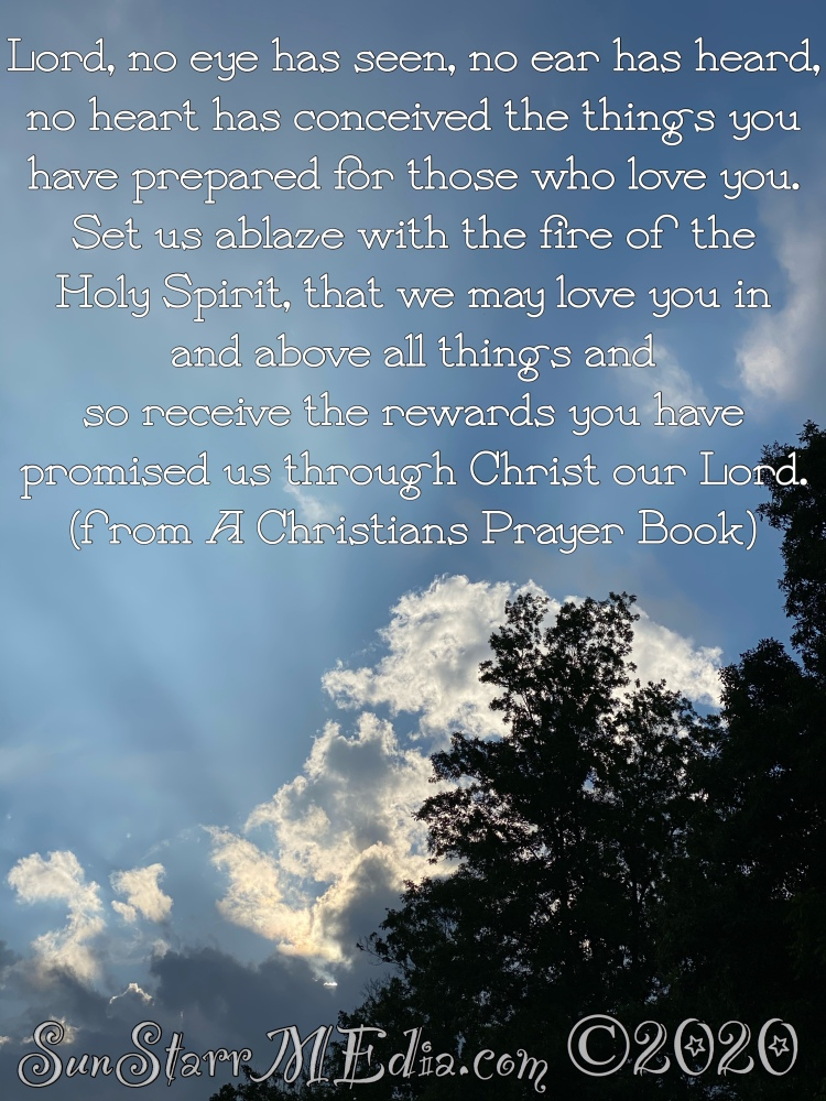 """""""Lord, no eye has seen, no ear has heard, no heart has conceived the things you have prepared for those who love you. Set us ablaze with the fire of the Holy Spirit, that we may love you in and above all things and so receive the rewards you have promised us through Christ our Lord."""" (from A Christian's Prayer Book)"""