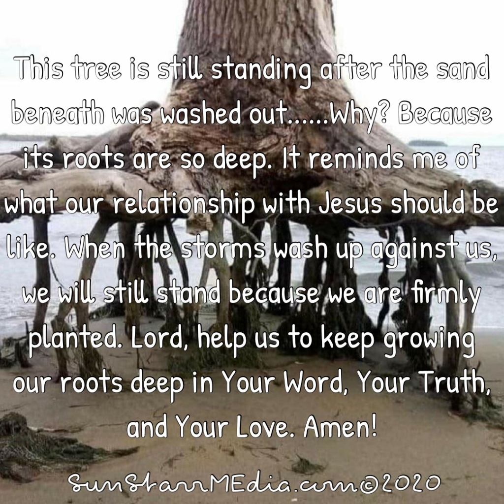 This tree is still standing after the sand beneath was washed out......Why? Because its roots are so deep. It reminds me of what our relationship with Jesus should be like. When the storms wash up against us, we will still stand because we are firmly planted. Lord, help us to keep growing our roots deep in Your Word, Your Truth, and Your Love. Amen!
