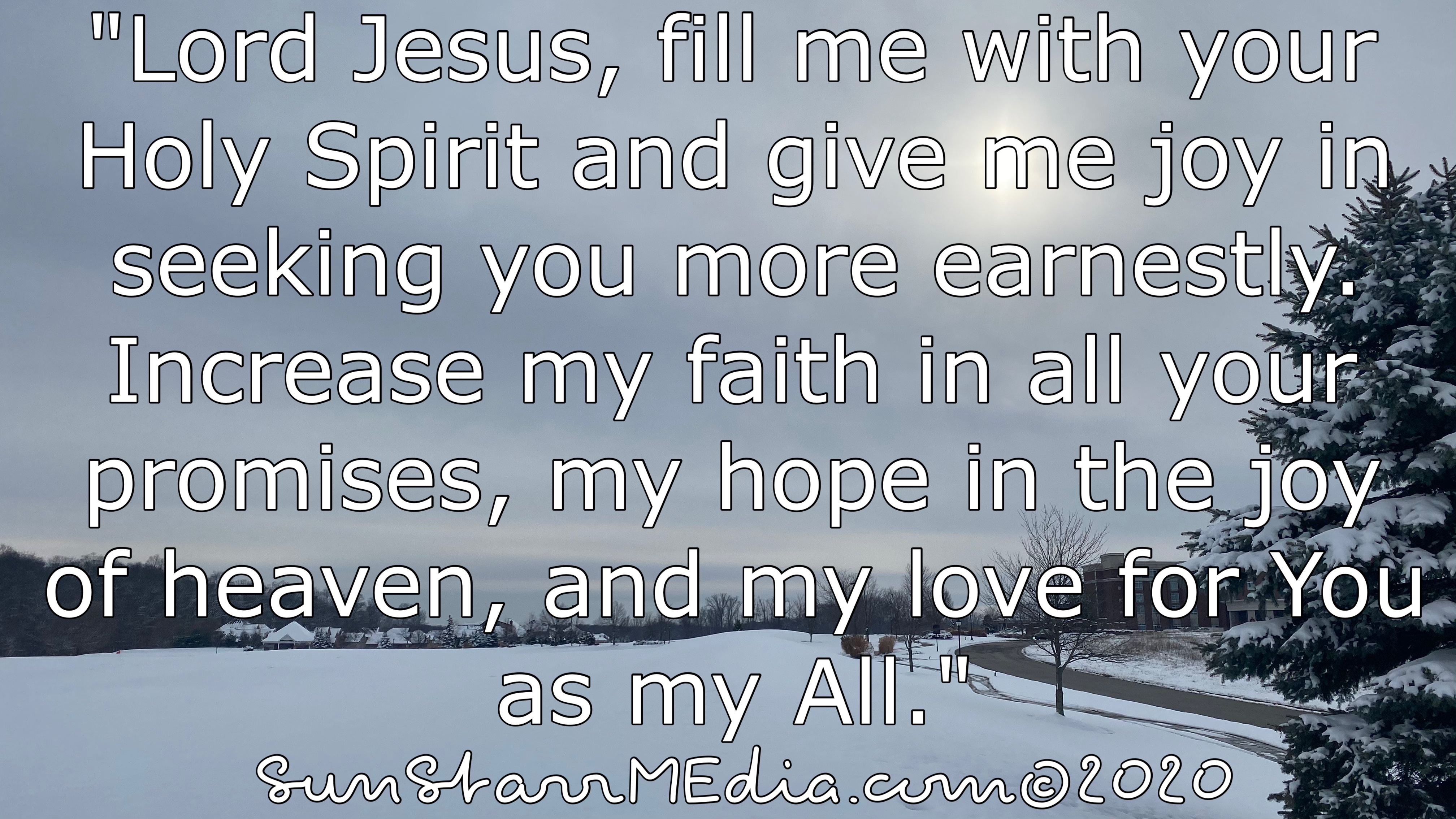 """""""Lord Jesus, fill me with your Holy Spirit and give me joy in seeking you more earnestly. Increase my faith in all your promises, my hope in the joy of heaven, and my love for You as my All."""""""