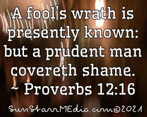 A fool's wrath is presently known: but a prudent man covereth shame. ~ Proverbs 12:16